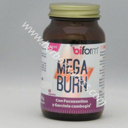 biform mega burn (1)