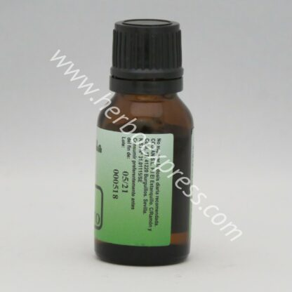 pastorcilla esencia eucalipto (3)