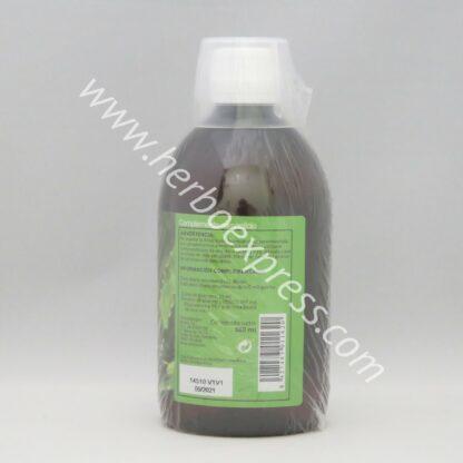 sotya bebida aloe vera 500 (3)